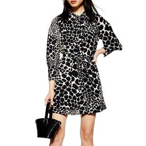 TopShop  leopard dress size 12US